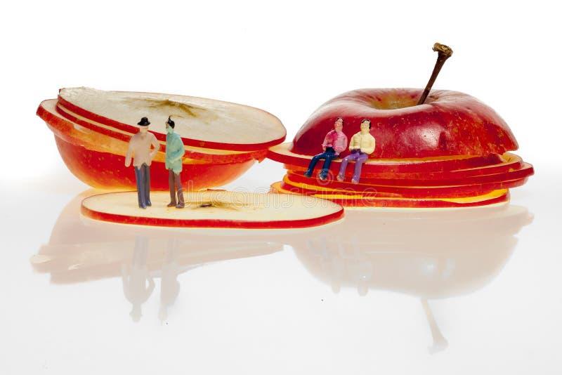 Jonagold apple malus domestica slices stock photo
