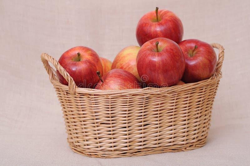 Jonagold jabłka zdjęcia royalty free