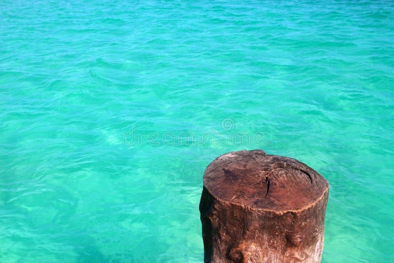 Joncteur réseau en bois tropical comme fléau d'amarrage dans les Caraïbe image stock