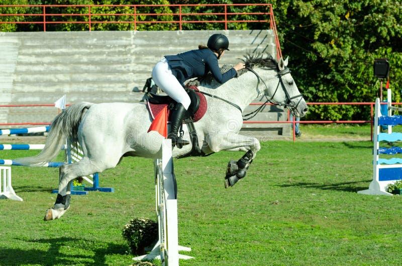 Jong de rit mooi wit paard en sprong van de vrouwenjockey over de bifurcatie in ruitersport royalty-vrije stock foto's