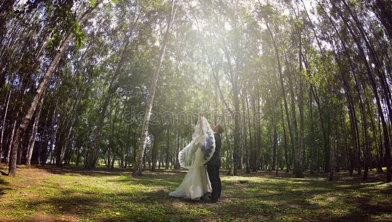 Jong enkel echtpaar in park royalty-vrije stock foto's