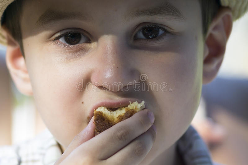 Jong geitje die Koekje eten stock afbeelding