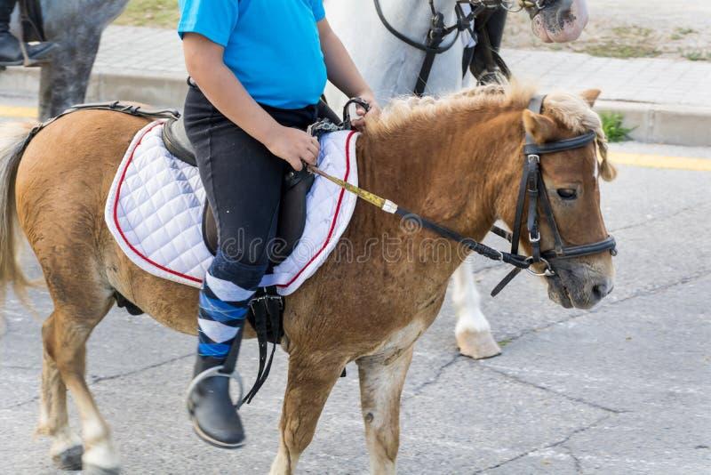 Jong geitje het berijden poney stock foto's