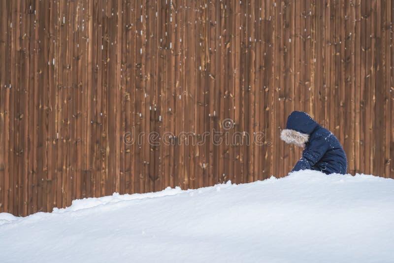 Jong geitje het spelen in een diepe sneeuw stock afbeeldingen