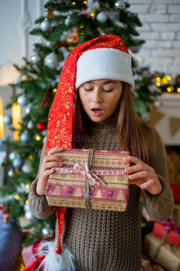 Jong geitje het vieren Kerstmis stock foto