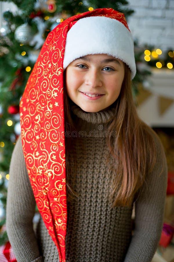 Jong geitje het vieren Kerstmis royalty-vrije stock foto