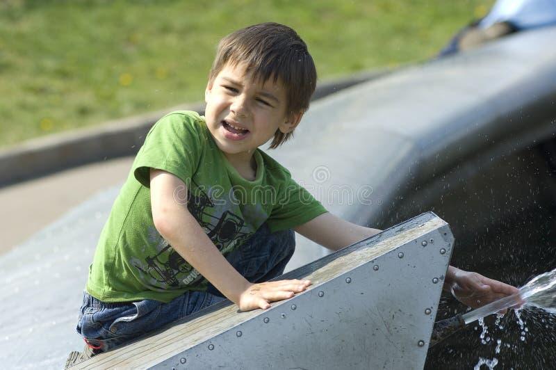 Jong geitje op de fontein stock afbeelding