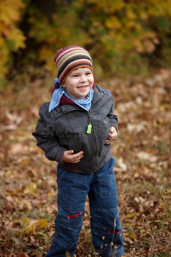 Jong geitje openlucht in de herfst stock afbeeldingen