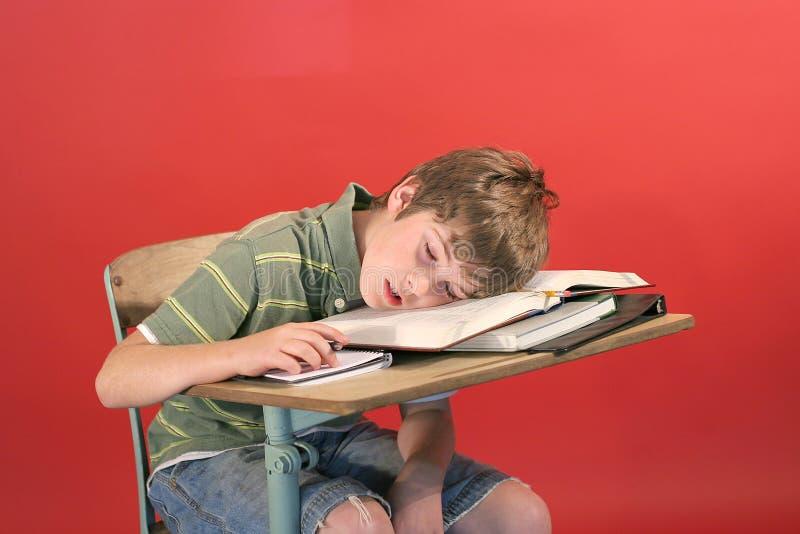 Jong geitje in slaap bij zijn bureau stock fotografie