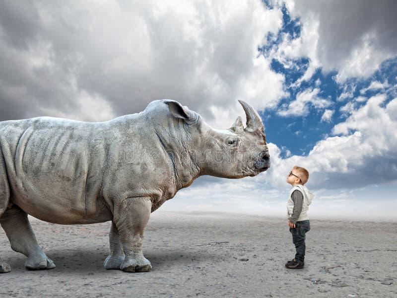 Jong geitje versus rinoceros royalty-vrije stock afbeeldingen