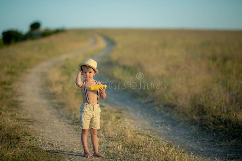 Jong geitjejongen holding en het plukken graan op landbouwbedrijf op gebied, in openlucht Graanoogst stock afbeelding