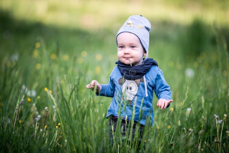 Jong geitjepeuter in gras, gelukkige uitdrukking royalty-vrije stock afbeeldingen