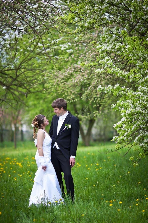 Jong huwelijkspaar stock fotografie