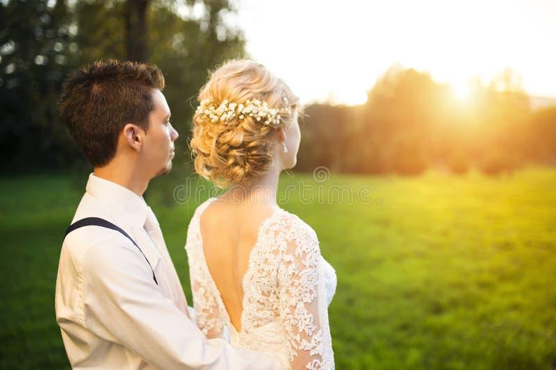 Jong huwelijkspaar op de zomerweide stock afbeeldingen