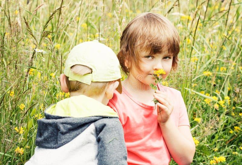 Jong jongen en meisje op het gras met bloem stock afbeelding
