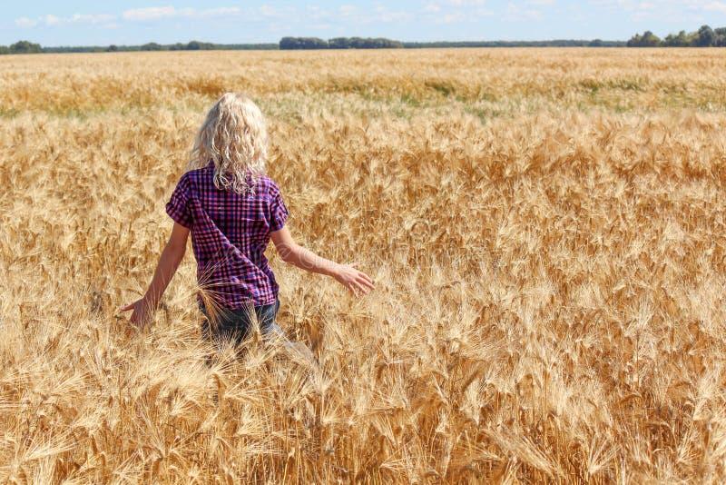 Jong Kaukasisch meisje die in wheatfield lopen die weg onder ogen zien stock fotografie