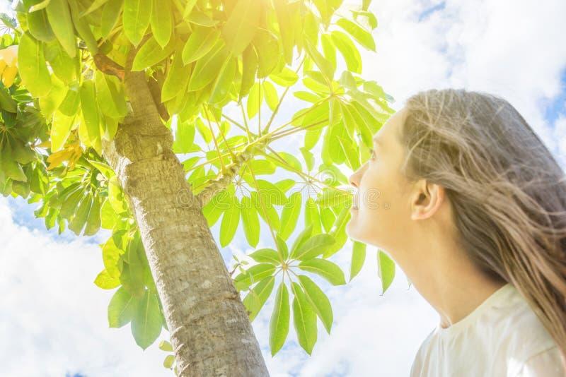 Jong Kaukasisch Vrouwenmeisje met Lang Kastanjehaar die zich onder boom bevinden die omhoog in het hemel groene gebladerte kijken royalty-vrije stock afbeeldingen