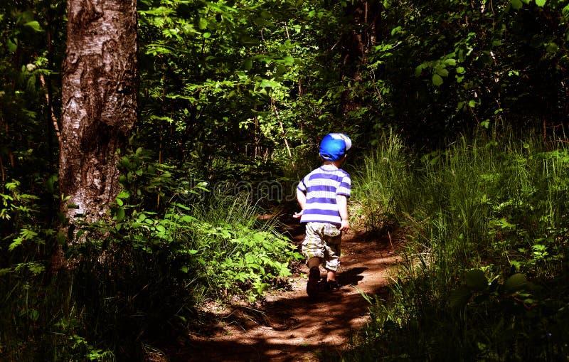 Jong kind in bos royalty-vrije stock afbeeldingen