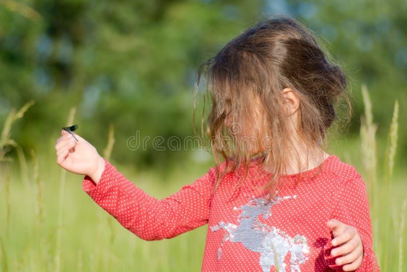 Jong kind die damselfly op hand bekijken stock foto's