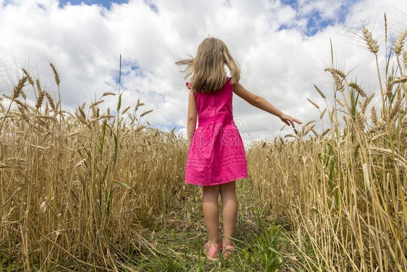 Jong kindmeisje in rode kleding met lang haar die zich in tarwe F bevinden royalty-vrije stock afbeelding