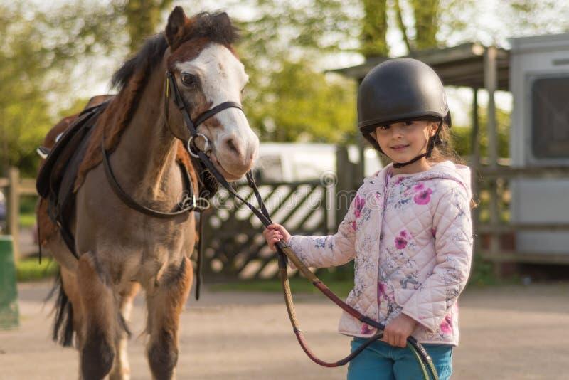 Jong meisje die berijdende helm dragen die Welse poney leiden stock afbeelding