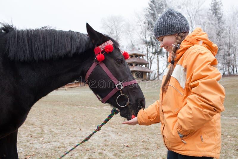 Jong meisje die een paard voeden stock foto
