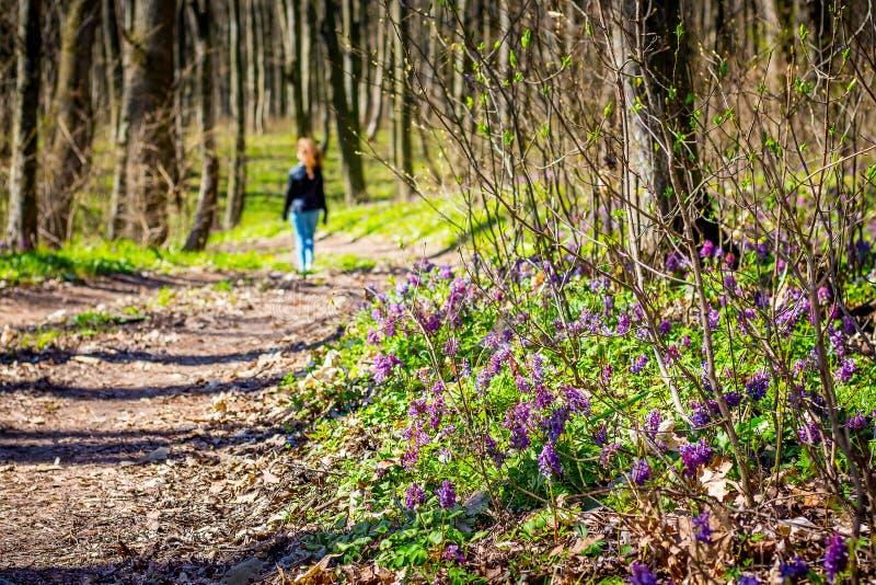 Jong meisje die in het bos tegen de achtergrond van de lentebloemen lopen Actieve rust, gezonde lifestyle_ stock afbeeldingen