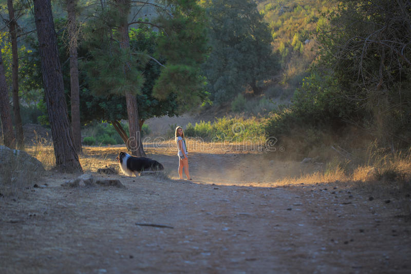 Jong meisje die met colliehond in het bos lopen stock afbeeldingen