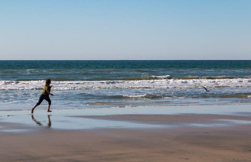 Jong Meisje die na Zeemeeuw lopen stock foto