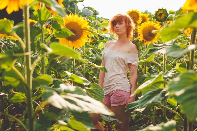 Jong meisje die van aard op het gebied van zonnebloemen genieten bij zonsondergang, portret van het mooie redheaded vrouwenmeisje royalty-vrije stock afbeelding