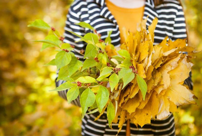 Jong meisje met bladeren in haar handen stock foto's