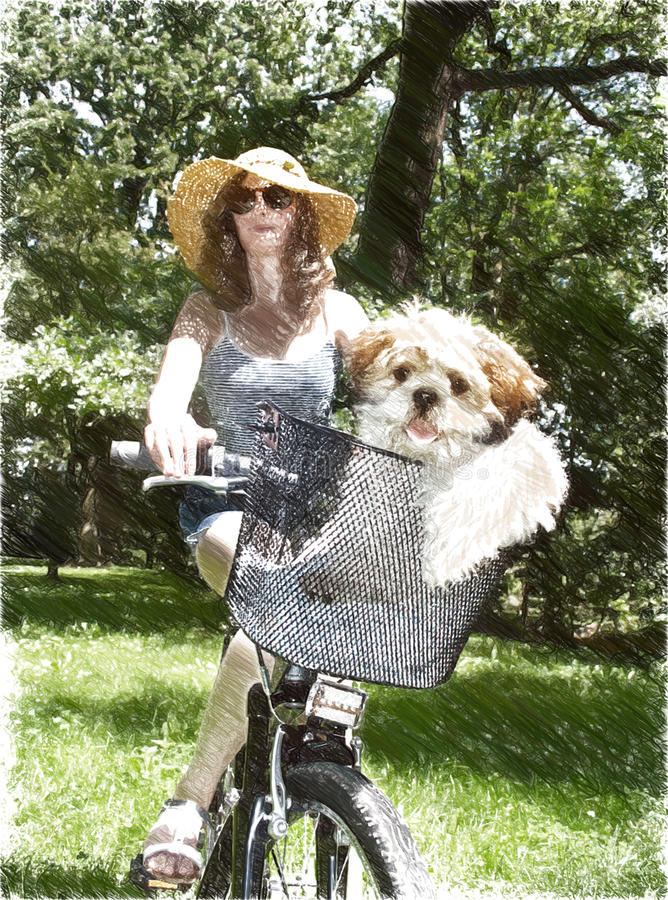 Jong meisje met fiets en shih tzupuppy in bascet stock fotografie