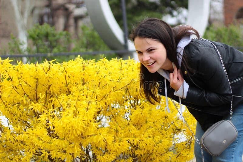 jong meisje met lang haar in een leerjasje die tegen de achtergrond van gele bloemen van de struik glimlachen royalty-vrije stock afbeeldingen