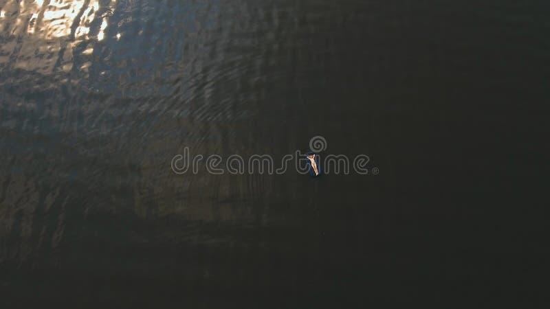 Jong meisje op een opblaasbare matras Luchtvideo royalty-vrije stock fotografie
