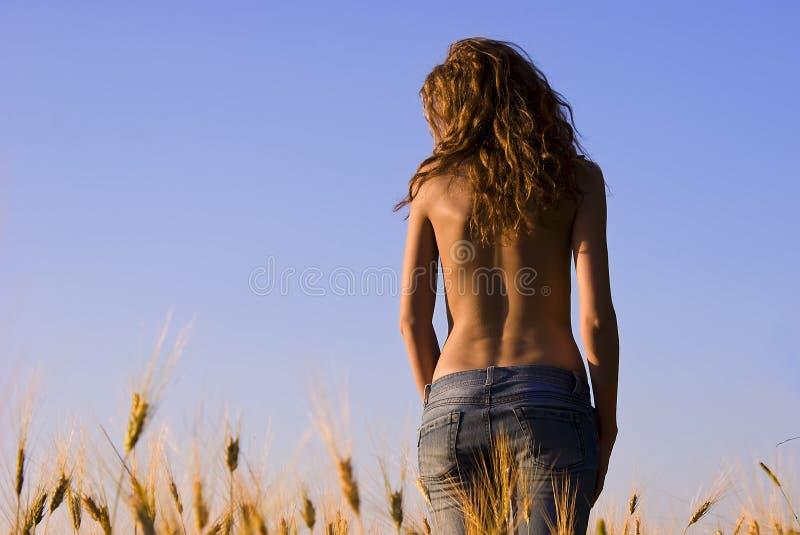 Jong meisje op een tarwegebied stock afbeelding
