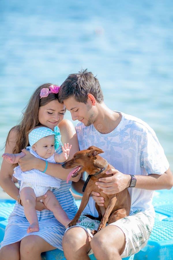 Jong modieus hipsterpaar bij liefde het lopen het spelen hond in tropisch strand, wit zand, koele uitrusting, romantische stemmin royalty-vrije stock foto