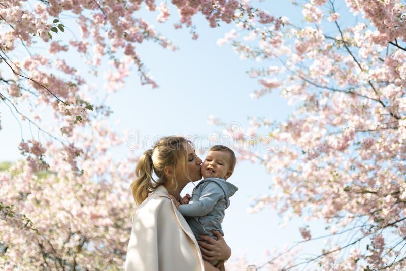 Jong moedermamma die haar houden weinig de jongenskind van de babyzoon onder tot bloei komende SAKURA Cherry-bomen met dalende ro stock foto