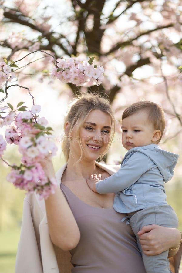 Jong moedermamma die haar houden weinig de jongenskind van de babyzoon onder tot bloei komende SAKURA Cherry-bomen met dalende ro royalty-vrije stock afbeelding