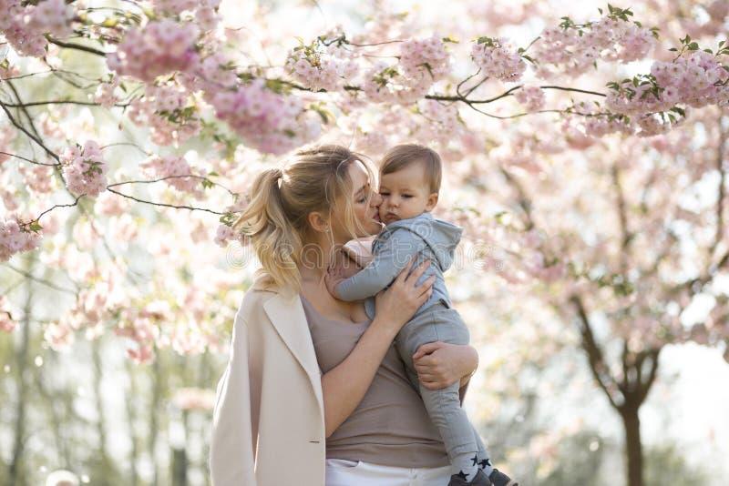 Jong moedermamma die haar houden weinig de jongenskind van de babyzoon onder tot bloei komende SAKURA Cherry-bomen met dalende ro royalty-vrije stock afbeeldingen