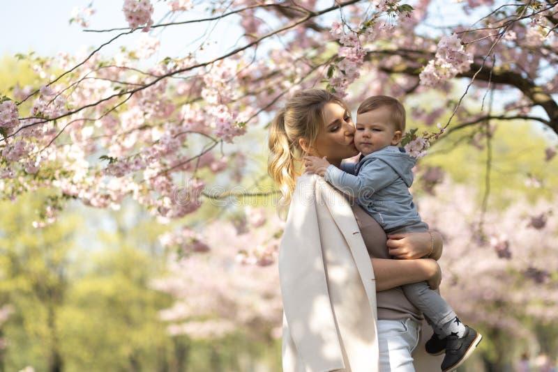 Jong moedermamma die haar houden weinig de jongenskind van de babyzoon onder tot bloei komende SAKURA Cherry-bomen met dalende ro stock afbeeldingen