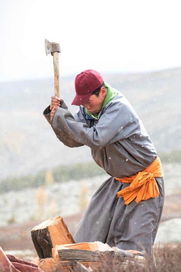 Jong Mongools mens het afschaffen brandhout stock afbeelding