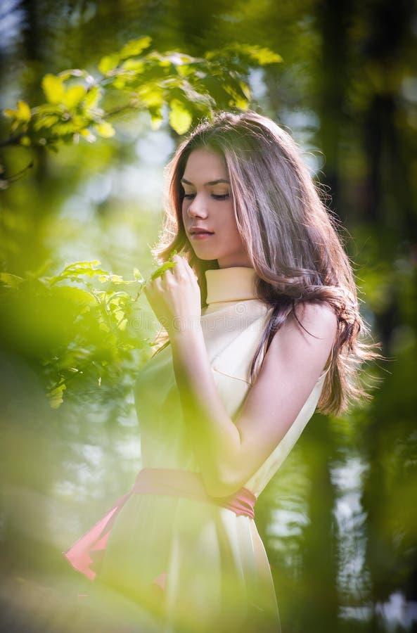 Jong mooi meisje in een gele kleding in het hout Portret van romantische vrouw in feebos die modieuze tiener overweldigen stock afbeeldingen