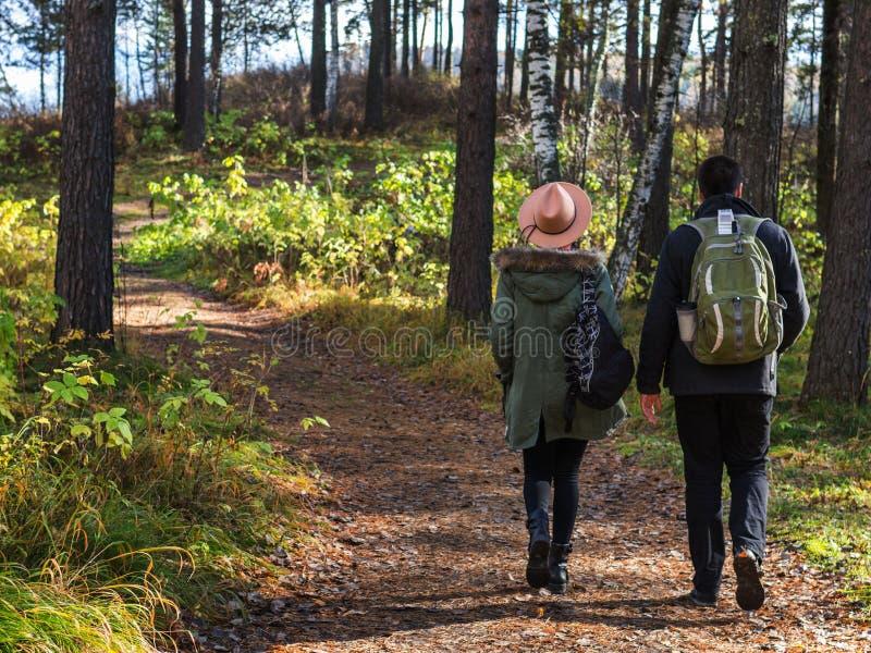 Jong paar in de handen van de liefdeholding en het lopen door een park op een zonnige de herfstdag royalty-vrije stock foto's