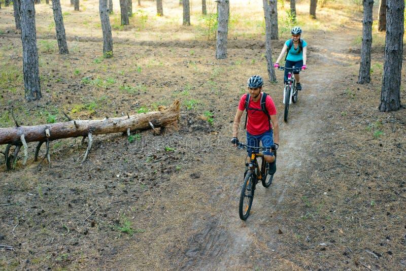 Jong Paar die de Bergfietsen in de Pijnboom Forest Adventure en het Concept van de Familiereis berijden royalty-vrije stock foto