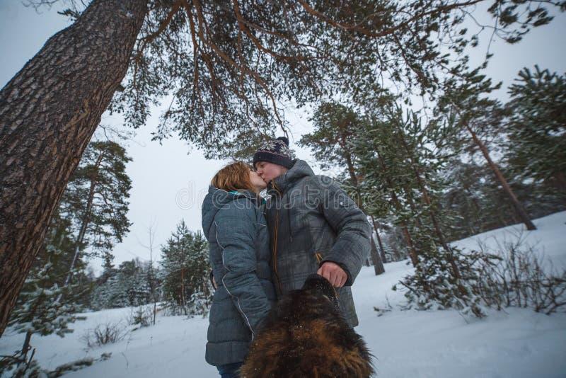 Jong paar die in liefde met hond in het het sneeuwpijnboom bos en kussen lopen royalty-vrije stock afbeelding
