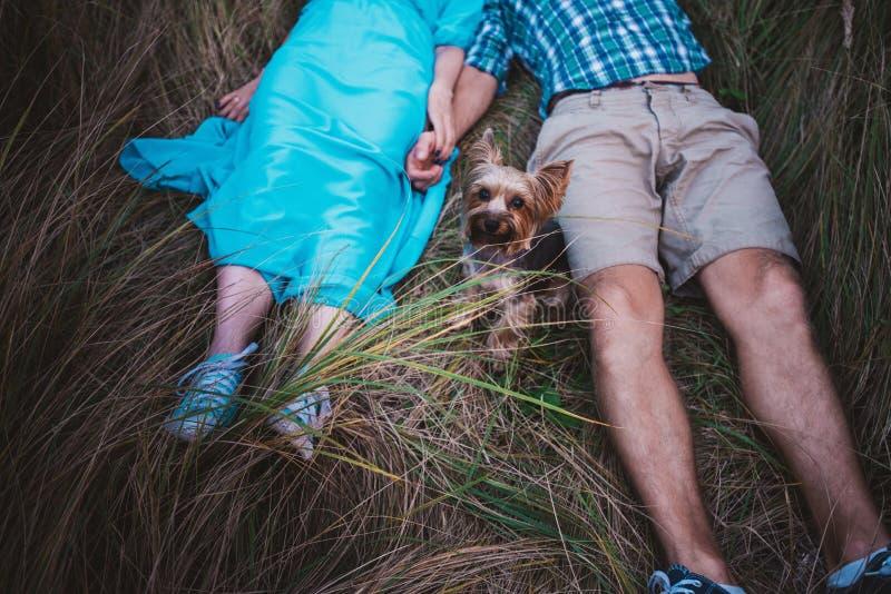 Jong paar die op de handen van de grasholding en de kleine hond tussen hen liggen royalty-vrije stock afbeelding