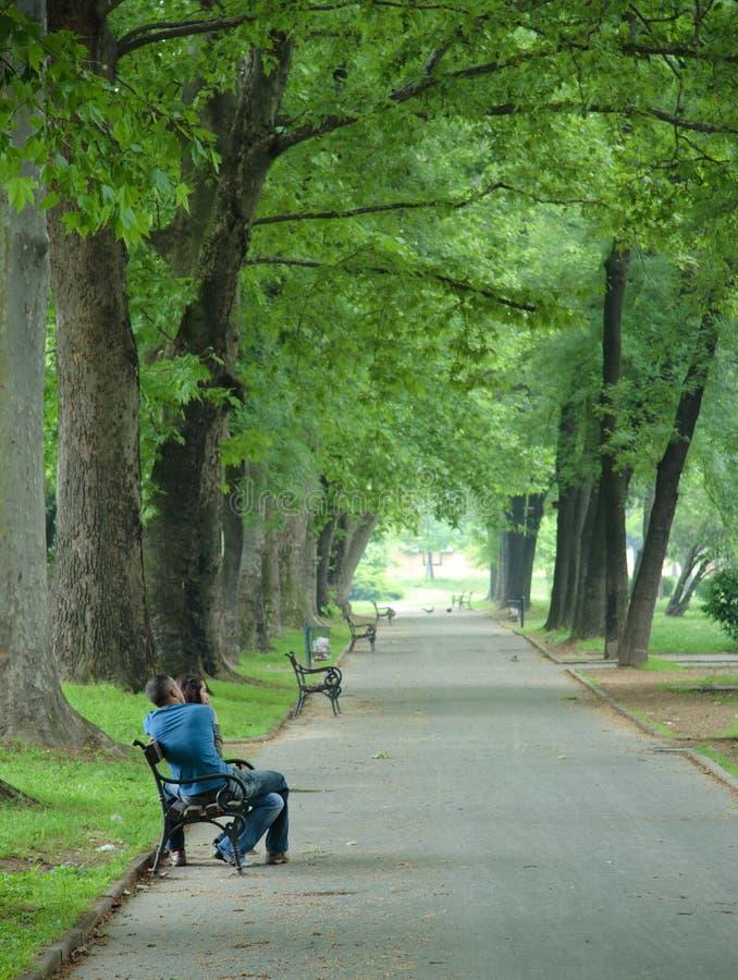 Jong paar in het park stock afbeeldingen