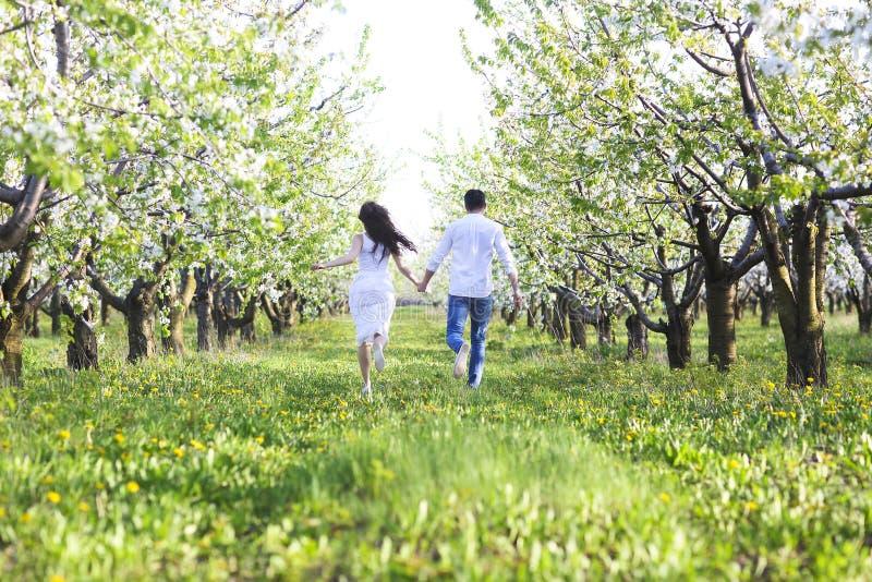 Jong paar in liefde die in de tuin van de de lentebloesem lopen stock foto's