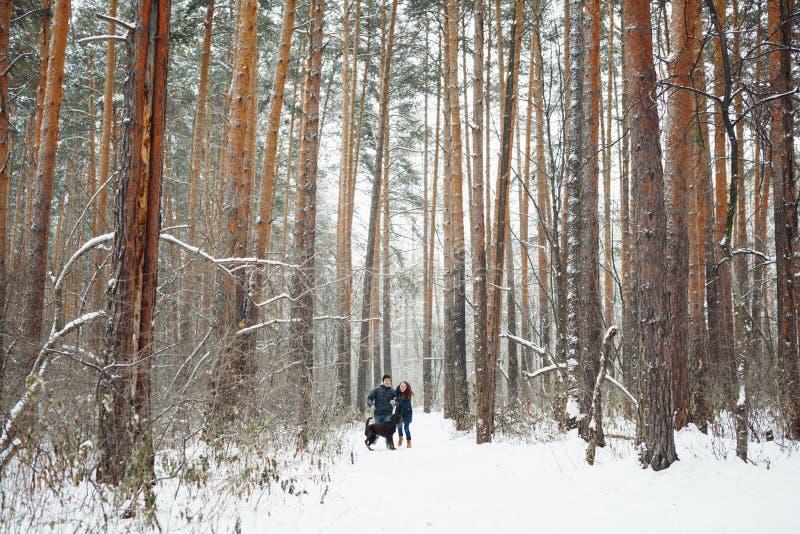 Jong Paar met een Hond die Pret in de Winter hebben stock fotografie
