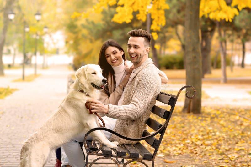 Jong paar met hond het rusten royalty-vrije stock afbeeldingen